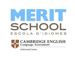 Merit-School